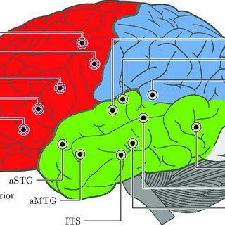 Neuro- Architecture: Brains, Bodies & the Biosphere